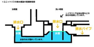 浴室排水構造