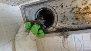排水の汚れをとる様子