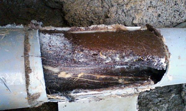 排水管が詰まる